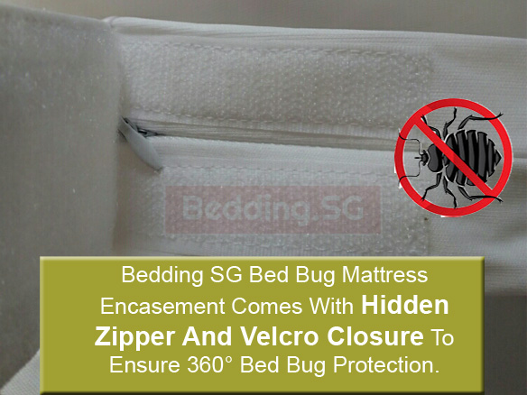 Bed Bug Mattress Encasements Zippered Waterproof